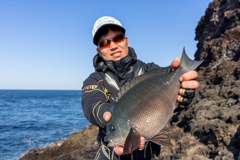 釣れる獲物